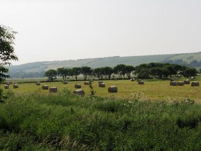 Freshly baled hay at Flixton Carr